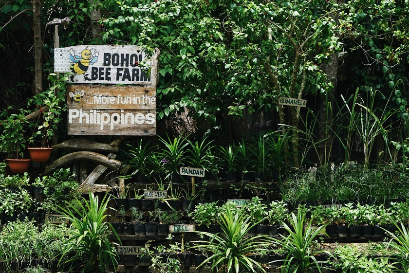eat-and-explore-bohol-bee-farm