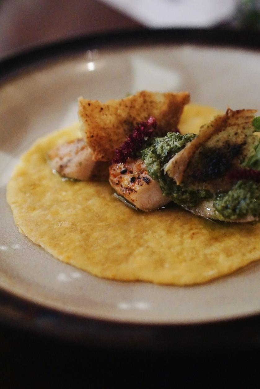 5-course-taco-dinner-at-alegria-cozinha-moderna-sangria-bar